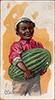 1891 Fruits