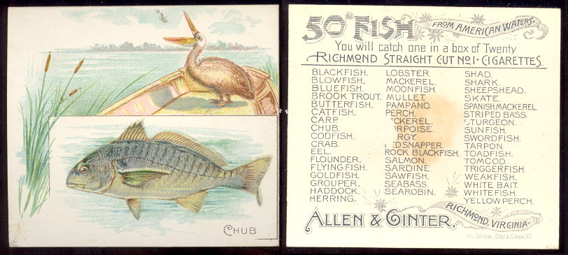 buying old baseball cards and N39 Fish from American Waters