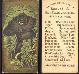 1880's Kinney Bros. Tobacco Co. cigarettes tobacco card